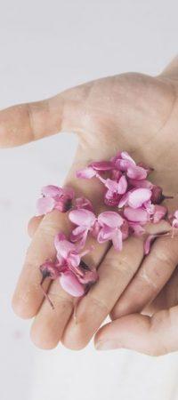 flores comunión pamplona