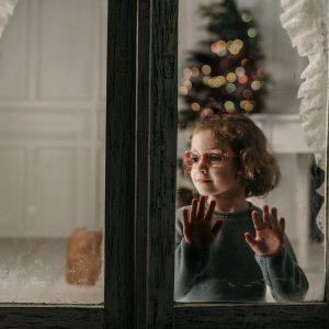 pinos de navidad pamplona