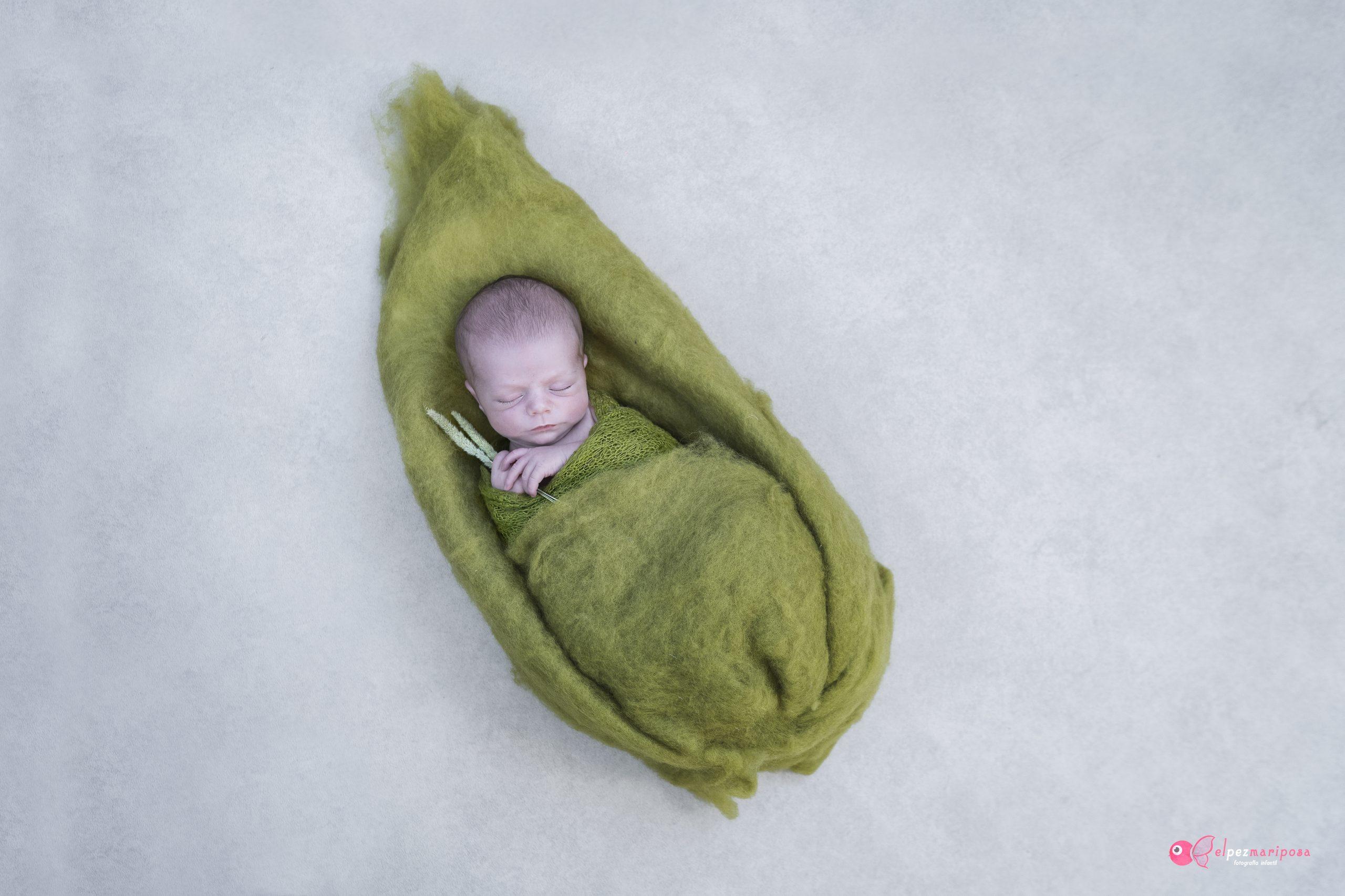 Fotógrafo bebés recién nacido